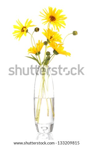 beautiful yellow flowers in vase isolated on white - stock photo