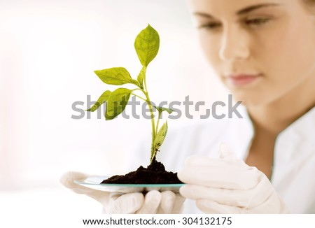 Beautiful young biologist experimenting in laboratory. Woman studying green sprout. Close up of sprout - stock photo
