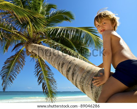 beautiful young boy plays on a coconut tree in a beautiful tropical beach - stock photo