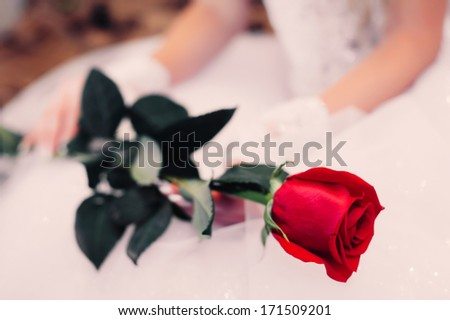 beautiful young bride with single red rose. Gorgeous bride blonde in wedding dress in luxury interior with diamond jewelry posing at home and waiting for groom. - stock photo