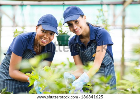 beautiful young gardeners working inside greenhouse - stock photo