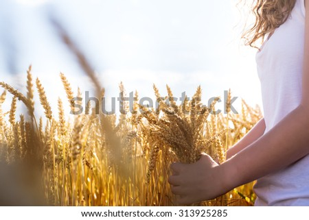 Beautiful young girl, standing in wheat field at sunset. Selective focus. Toned in warm colors. - stock photo
