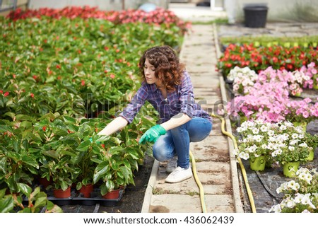 beautiful young lady in plant nursery - stock photo