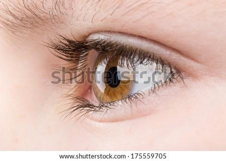 Beautiful young teenager health brown eye macro - stock photo