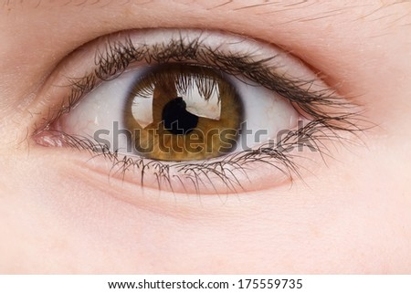Beautiful young teenager health brown eye macro