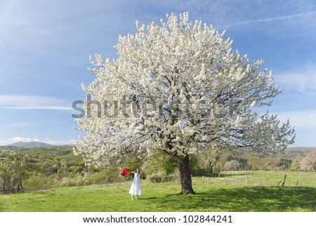 Beautiful young woman enjoying the blossom of a cherry tree in bloom in springtime - stock photo