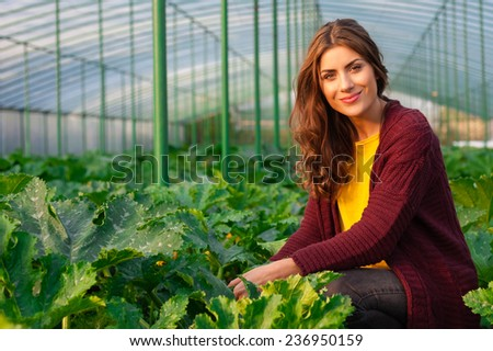 Beautiful young woman gardening and smiling at camera. Greenhouse produce. Food production. - stock photo