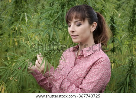 Beautiful young woman in a hemp field holding a hemp plant stem and looking at the cannabis flower - stock photo