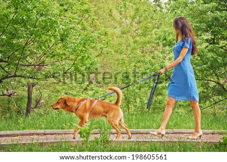 Beautiful young woman in dress is walking with dog in summer park - stock photo
