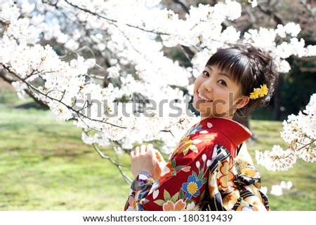 Beautiful young woman in Japanese Kimono viewing cherry blossoms. Spring in Japan.
