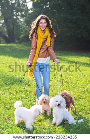 Beautiful young woman with four poodles in the park - stock photo