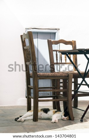 Beautifull cat sleep under the chairs on Sifnos island, Greece - stock photo