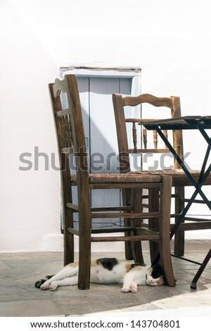 Beautifull cat sleep under the chairs on Sifnos island, Greece - stock photo