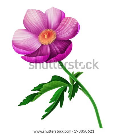 Beauty anemone flower card - stock photo