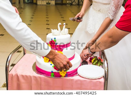Beauty bride and handsome groom are cutting a wedding cake.