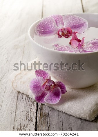 beauty concept - stock photo