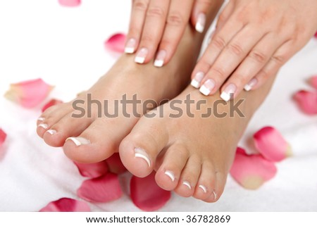 beauty feet with petals - stock photo