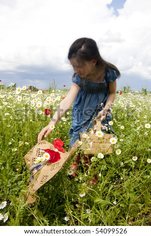 beauty girl on the field with daisies and poppy - stock photo