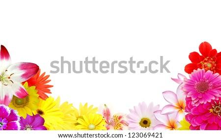 Beauty mix flowers frame isolated white background - stock photo
