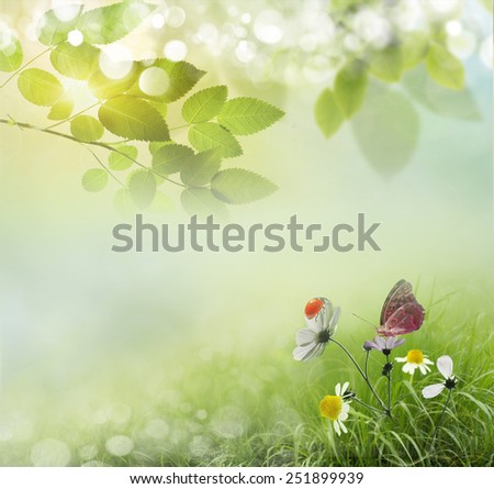 Beauty natural spring background with daisies. - stock photo