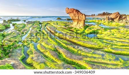 Beauty of the ancient stone with moss-covered stone path out of green moss covered rock big rock overlooking the sea to welcome the new day dawn for bright - stock photo