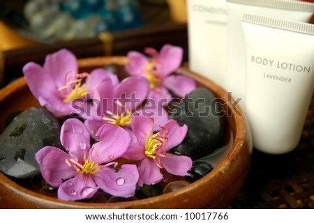 Beauty Spa - stock photo