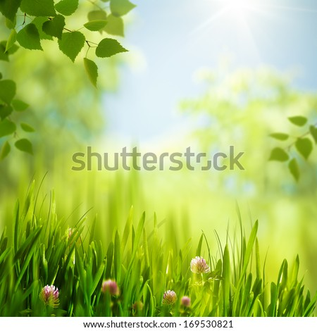 Beauty summer day in the forest, abstract seasonal backgrounds - stock photo