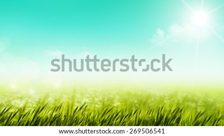 Beauty summer day on the meadow, natural backgrounds - stock photo
