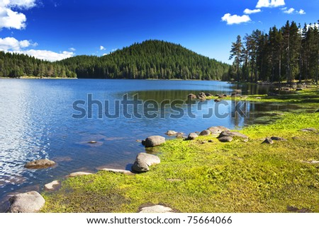 beauty sunny day on the lake - stock photo