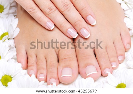 Beauty treatment of a  female feet with camomile's flower around it - stock photo