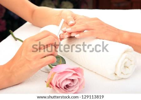 Beauty treatment photo of nice manicured woman palms - stock photo