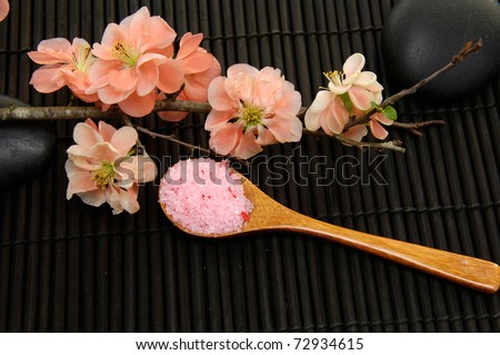 beauty treatment -Spring flowering quince and herbal salt on black background - stock photo