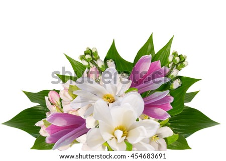 beautyfull bouquet  of white and pink magnolia  isolated on white with space for text - stock photo