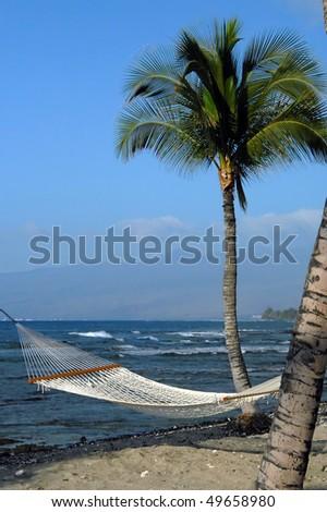 Beckoning hammock slung between palm trees has wonderful view of Mauna Loa volcano on the Big Island of Hawaii. - stock photo