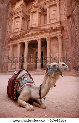 Bedouin camel rests in front of the magnificent treasury carved into the rock at Petra in Jordan - stock photo