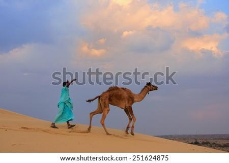 Bedouin leading his camel in Thar desert near Jaisalmer, Rajasthan, India - stock photo