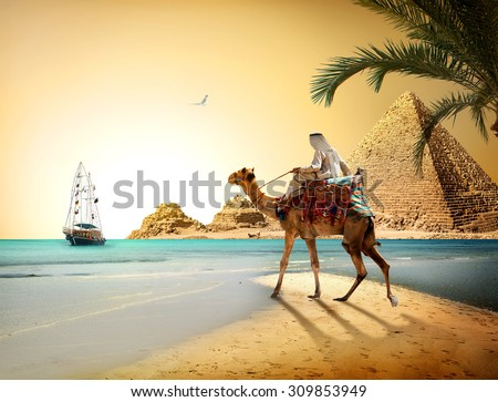 Bedouin on camel near pyramids and sea