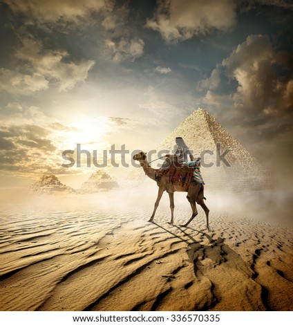 Bedouin on camel near pyramids in fog