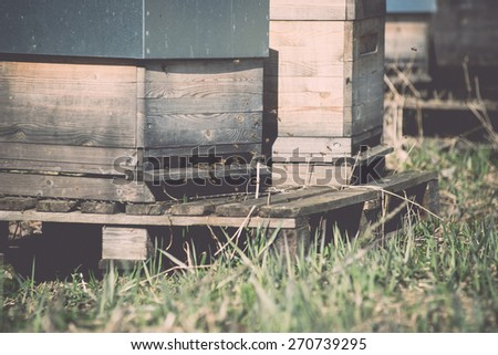 bee apiary in forest in countryside plantation with bees - retro vintage film effect