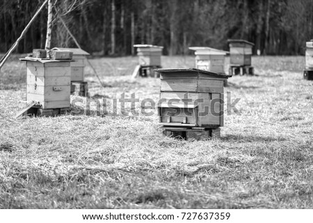 Bee hive standing in field