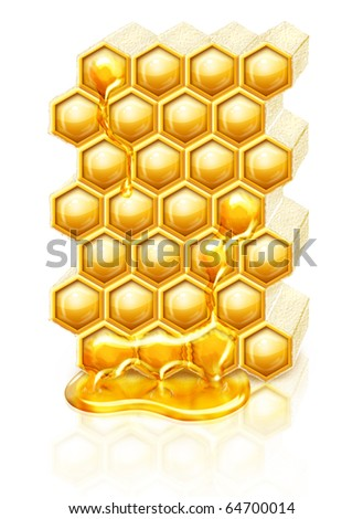 Bee honeycombs with honey flowing down - stock photo