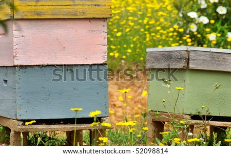 Bee houses at Portugal.