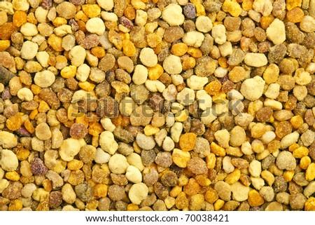 bee pollen background - stock photo