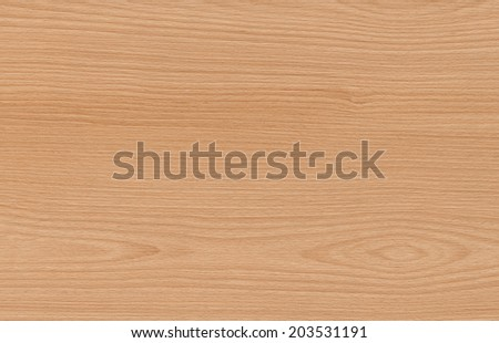 beech wood texture background - stock photo