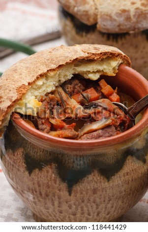 Beef bourguignon - stock photo
