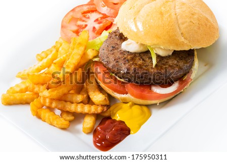 Beef hamburguer in white bread served with french fries,lettuce,tomato,onions,french fries,ketchup,mayonnaise, and mustard. - stock photo