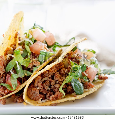 Beef tacos with lettuce cheese and tomato - stock photo