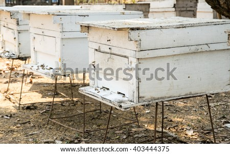 Beehives in an agriculture north of thailand - stock photo