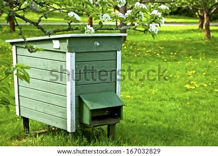 Beehives in garden with blossoming fruit trees.