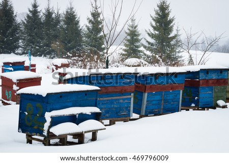 Beehives in snowy winter